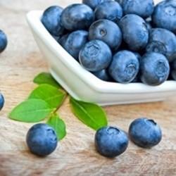 Perfumer's Apprentice Flavors Blueberry (Wild)