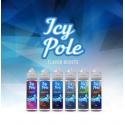 Icy Pole 20/60ml